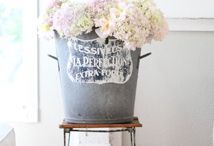 Flowers make me happy / by TraceyandErnest Hires