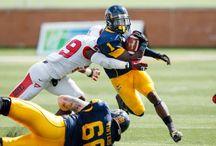 2014 NFL Draft  / by Buckeye State Sports