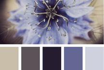Color inspiration / by Jordan Pritchett