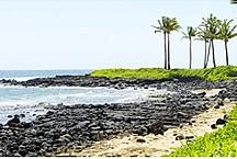 Hawaii Trip / by Alison Schouten