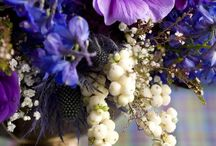 Z Garden Flowers / by Sandy Williams Sakalas