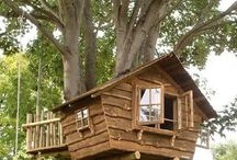 Tiny homes/tree houses / by Vicki Knupp