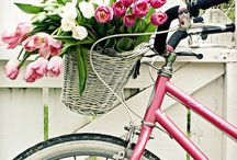 Bike Love / by Debi Vitale