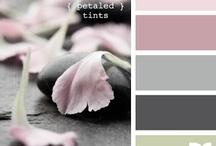 colors / by Barbara Santarossa