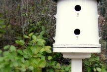 bird houses / by Nancy Potter
