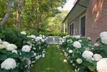 decor: gardens / Gardens / by elana's pantry