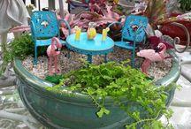 Fairy Gardens - Gardening in Minature / by Megan Anne