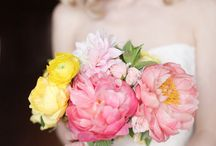 Dream Wedding / by Courtney Gordner