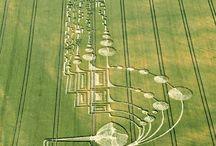 Crop Circles / by Flo Davila