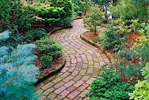 garden / outdoor ideas for now or in the future / by Desirae Ballard