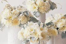 Wedding Ideas / by Stephanie Bremenour