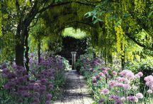 Gardens & Landscape Design / by K. S. R.