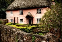 Cottages Curiosities / by Andrea Tankersley