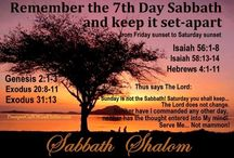 Sabbath Shalom / Quotes/ products/recipes  / by Marisa Rodriguez