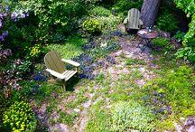 green spaces / by Arlene Matthews
