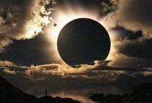 Goodnight Moon / by Linda Swoboda