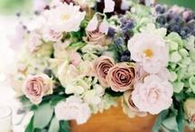 Flower I love... / by Jan Sadudee
