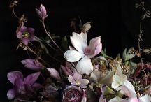 Flowers Dickens Style / by Marjo Omtzigt