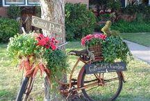 Planter Ideas / by Ann Thompson