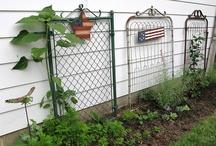 gardening / by Amie White Sorrells