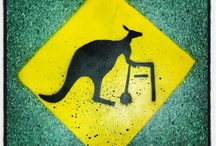 Bizarre Signs / by Alex Guibord
