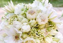 Wedding - Flowers / by Tonya Vila