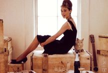 celebs with cats / by Jelena