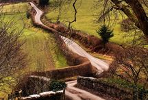 Road Or Path Best Taken / by Judith Cameron