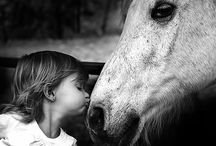 Precious / Horses and children, I often think, have a lot of the good sense there is in the world.  