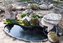 mini garden / by ram siva