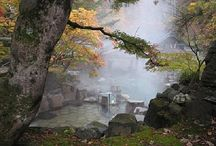Japan + Hawaii = Love / by Kimberly Tortorice