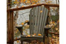 Fall / by Dana Schwartz