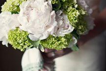 Wedding / by Lizzy Aitken
