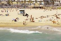OC Beaches / by Anaheim Quality Inn & Suites