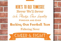 University of Tennessee / by Kayla Ellis