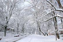 Snowy Wintery Wonderland... / by Cara