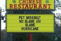 Funny Signs / by Kaleigh Woll