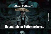 Harry Potter / by Maddi De Guzman