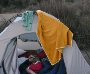 Camping / by Amy Wilson