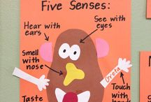 Daycare -5 Senses Theme- / by Angela Schingeck