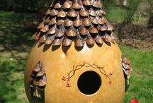 Bird Houses / by Lara Sisk