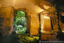 Garden / by Jewel James