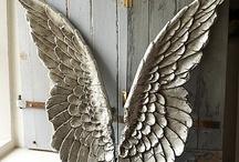 angels / by Ginny Foley