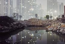 A bit of everything / by Dinorah Matias-Melendez