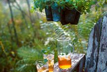 Container Gardening / by Misty Pearson