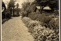 Historic Photos: Craftsman Farms 1911 - 1917 / by The Stickley Museum at Craftsman Farms