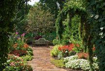 Gardening / by Patricia Bradley
