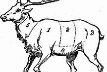 Venison Processing / by Deer & Deer Hunting