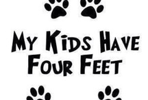for my fur babies / by Jamie Akers - Cove Side Creations