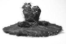 Black/White Swan Fairytale Inspiration / by Savannah Bridges